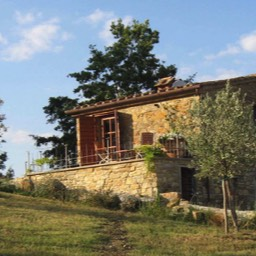 Borghetto Calcinaia: Casa Olivetto, the annex