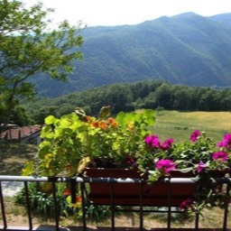 Casa Annabella: Looking out at the view in the hills of Tuscany