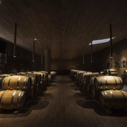 Antinori winery cantina barrels
