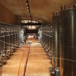 Antinori winery wine storage