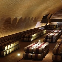 Antinori winery cantina