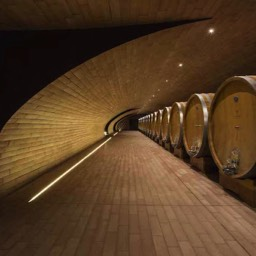 Antinori winery wine barrels