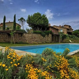 Poggiodoro: The shared pool area and surrounding plants flowering, mid-summer